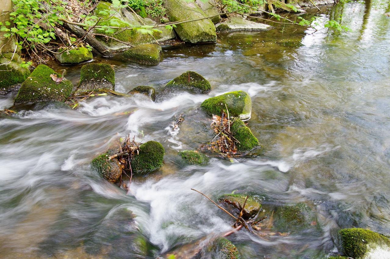 Ein kleiner Bach fließt in den Plöner See in der Nähe des Guts Nehmten