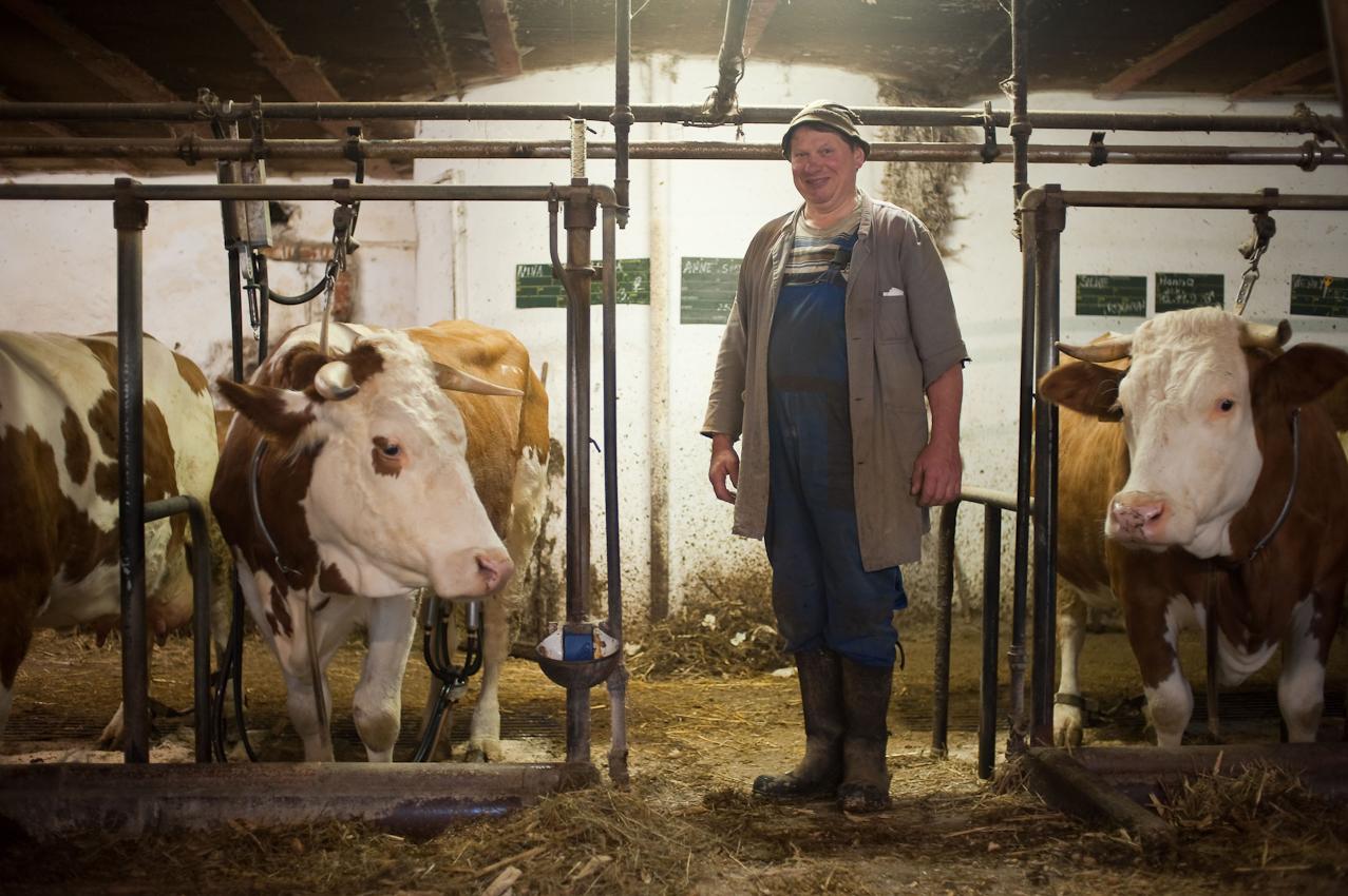 Ein Tag in dem 140-Einwohner-Dorf Laibarös. Milchbauer frühmorgens in seinem Stall.