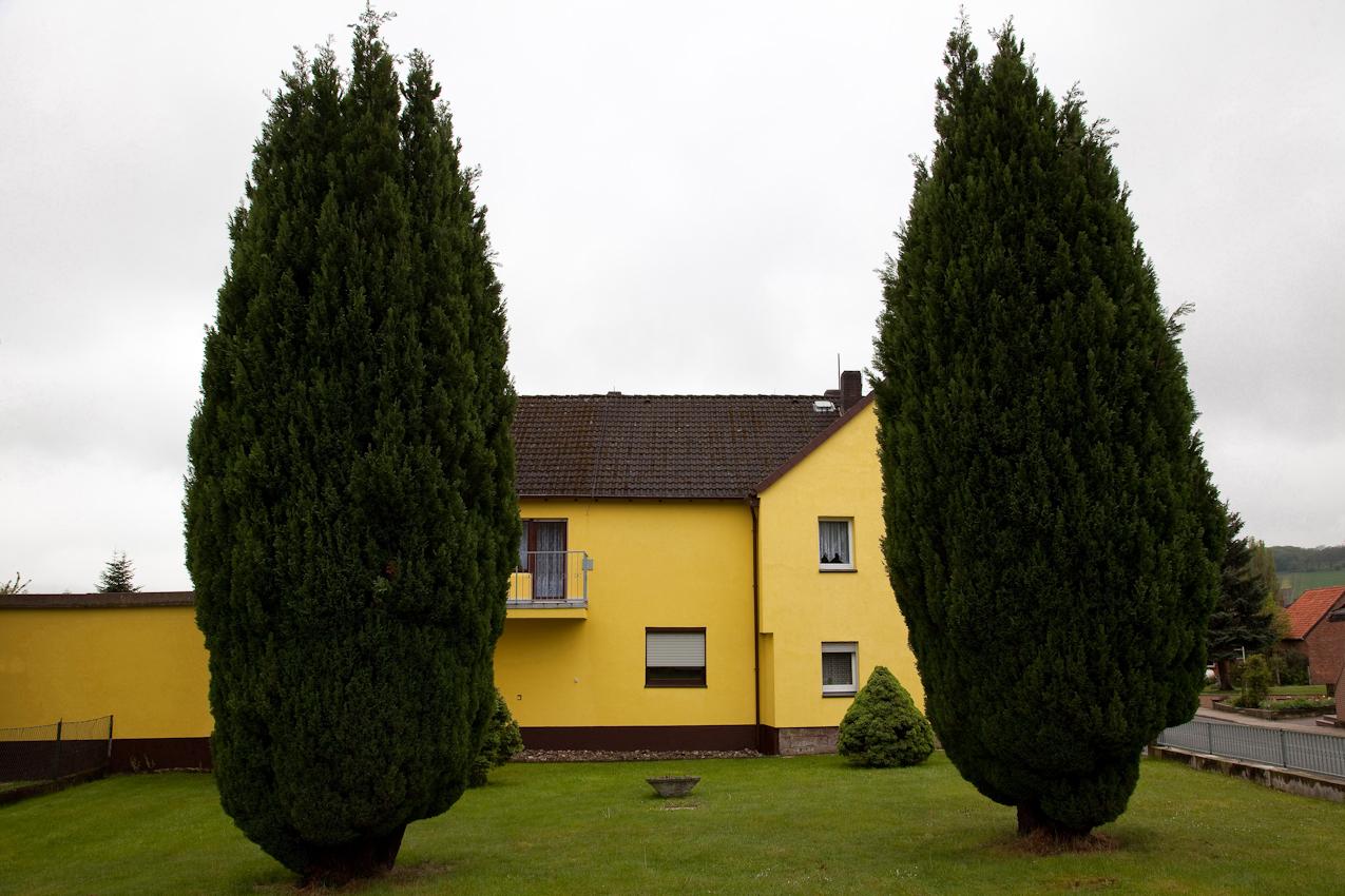 Weserbergland, Dielmissen, 12:43 Uhr. Zwei Riesenwacholderbäume vor kleinem, gelbem, neuen Haus.