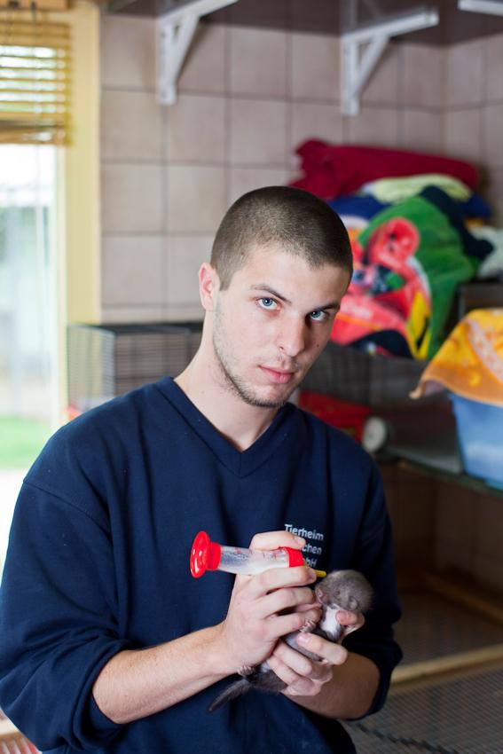 Jan Muller, 22 und seit 11 Monaten, Tierpfleger Geselle mit Leib und Seele. Um die kleinen Marderbabys des Tierheim Münchens in der Riemer Str. durch zu bringen , nimmt er die jungen Tiere nach Feierabend zu sich nach Hause, um ihnen auch in der Nacht die Flasche geben zu können.
