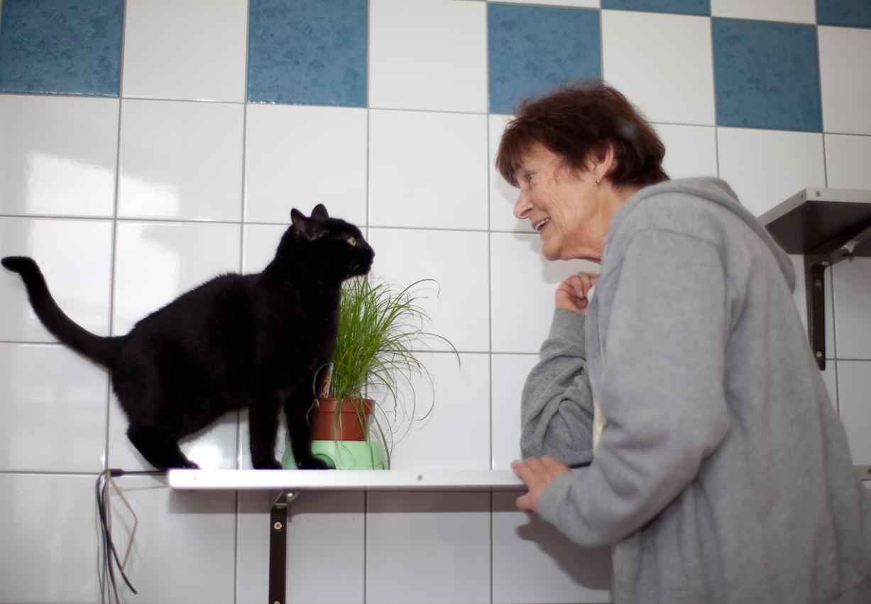 Marianne Seib, 74 Jahre jung, vom Beruf Krankengymnastin, ist seit ca 8 Jahren in Münchner Tierheim ehrenamtlich tätig. Sie verbringt täglich mehrere Stunden mit den schwierigsten Katzen des Tierheims um ihnen den Weg in eine Vermittelung zu ebnen. Hier mit Katze Maunzi die bereits seit uber einem Jahr auf eine Familie wartet.