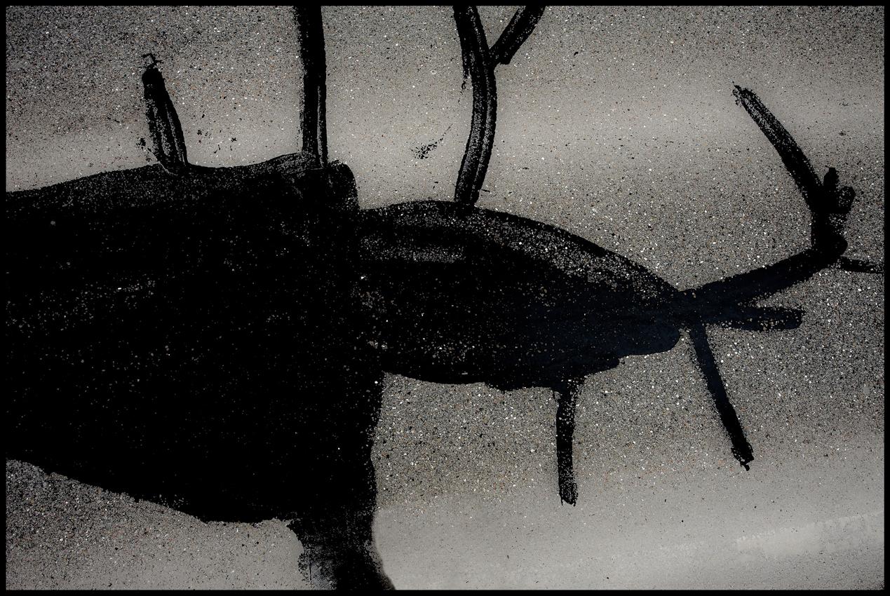 """Serie aus dem Langzeitprojekt """"FLICKWERK"""". Bestandsaufnahme vom 7.Mai 2010. Im Projekt """"FLICKWERK"""" werden Straßenausbesserungen in Hinsicht auf Ihre formale Bildsprache dokumentiert. Bei vielen der dokumentierten Motive fällt auf, dass sich die Ausbesserungen nicht strikt an die Rissbildung in der Teerdecke orientieren. Inwiefern dies von Seiten des Straßenarbeiters bewusst oder unbewusst geschieht bleibt offen.Schleißheimer Strasse, DACHAU."""