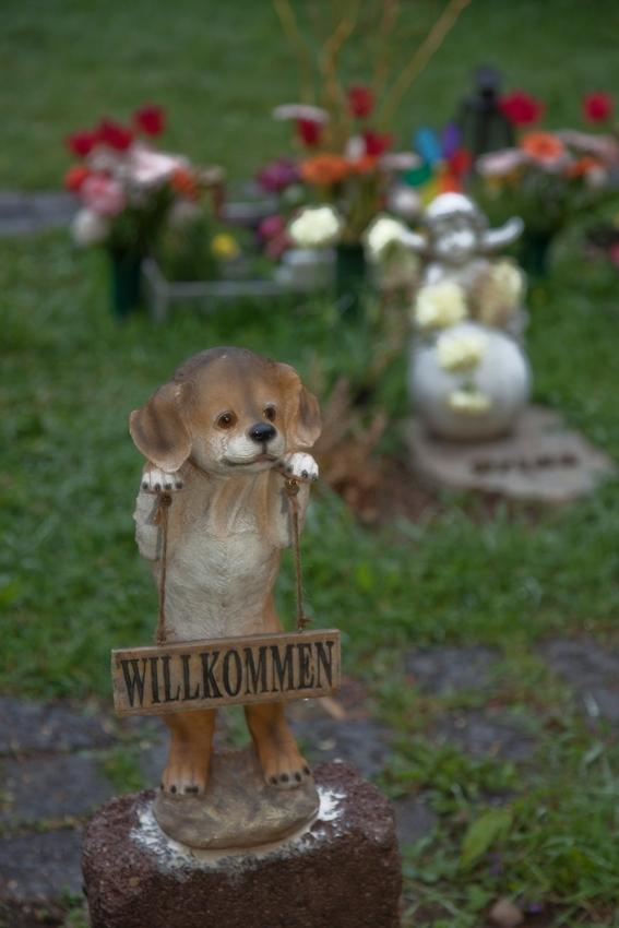 Hundegrab auf dem Berliner Tierfriedhof in Steglitz, Schützelbergstr. 17