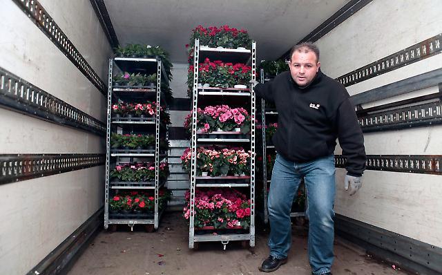 Blumengroßmarkt 1