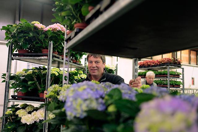 Blumengroßmarkt 2