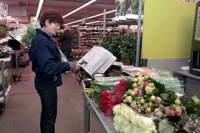 Blumengroßmarkt 8