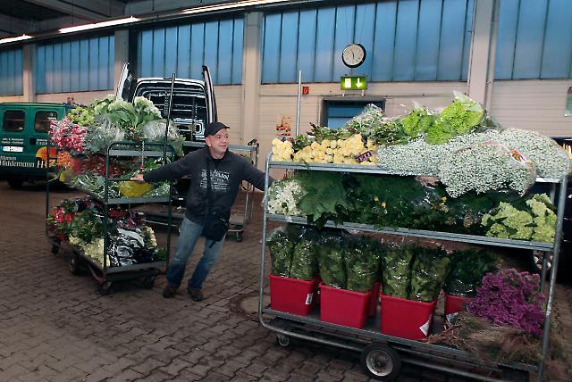 Blumengroßmarkt 10