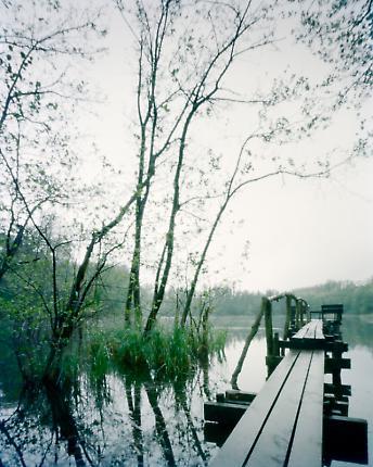 Pingsdorfer See 03