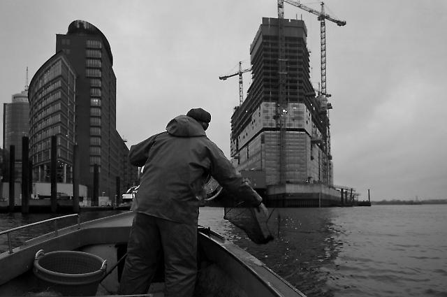Elbfischer Olaf Jensen fischt mit Aalreusen, hier vor der Kehrwiederspitze im kleinen offenen Boot. Rechts die Baustelle der Elbphilharmonie. Jensen fahrt auf Fischfang im Hafenbereich und der Elbe. Dabei kommt er an grossen Containerschiffen, Terminals, und unter der Koehlbrandbruecke sowie zahlreichen Schleusen vorbei.