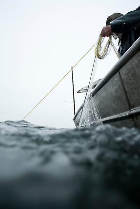 Fischerei 4